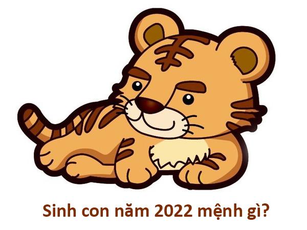 Sinh con năm 2022, năm Nhâm Dần thuộc mệnh gì?