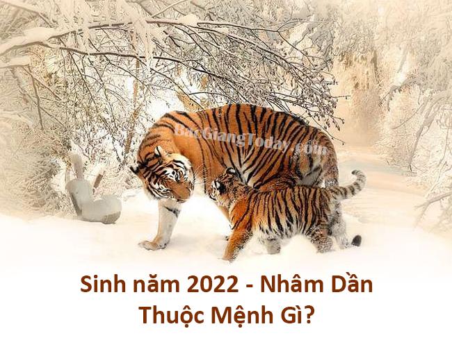 Sinh năm 2022 thuộc mệnh gì? Sinh tháng nào đẹp?
